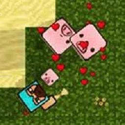 Minecraft .io